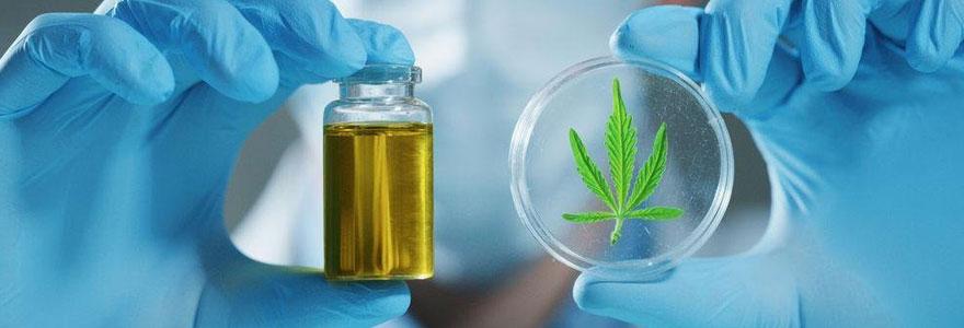 Cannabis et cannabinoïdes en médecine